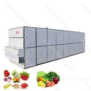 دستگاه خشک کن میوه صنعتی